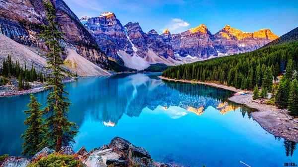 Định cư Alberta Canada