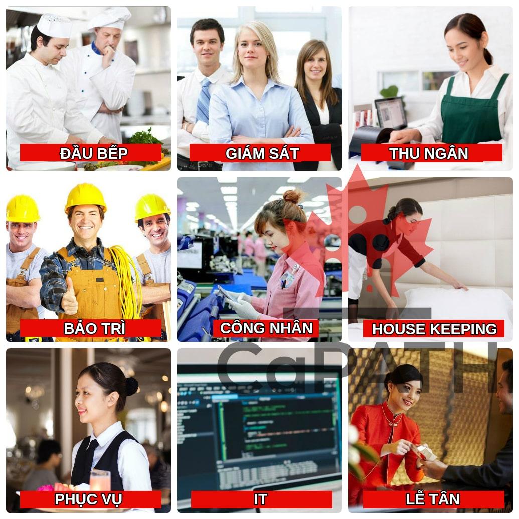 danh sách công việc foreign worker stream chương trình đề cử tỉnh bang ontario và các quốc gia khác