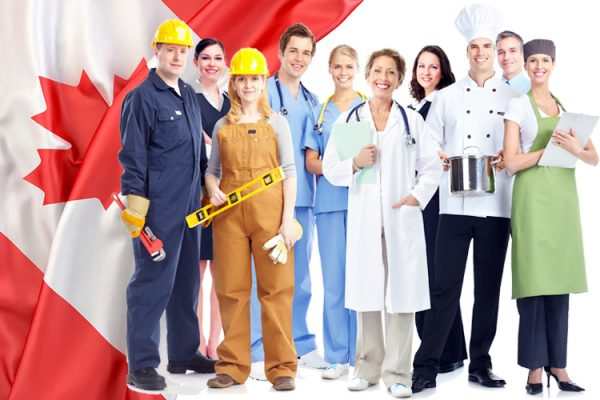 các ngành nghề đang thu hút nhập cư tại Canda