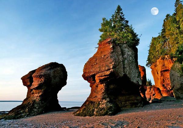 Vịnh Fundy