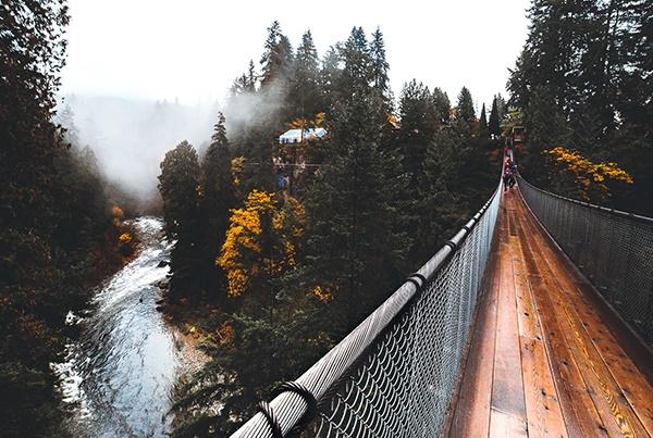 cầu treo capilano ở vancouver canada