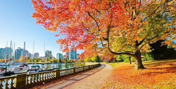 công viên Stanley Park