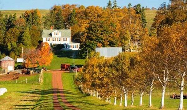 Cuộc sống ở Prince Edward Island