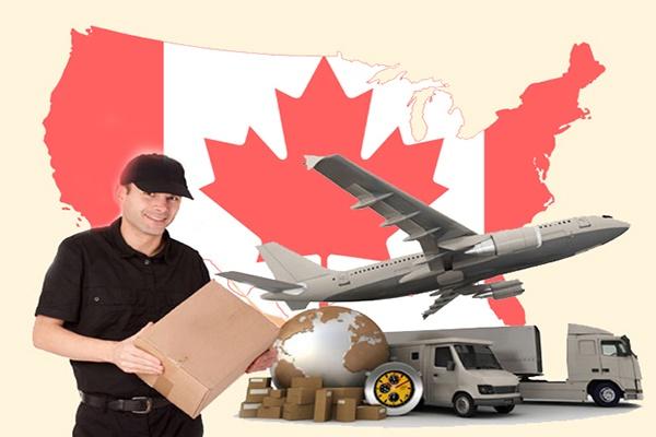 Ship hàng từ Canada về Việt Nam